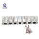Pig Farming Equipment Gestation Crates/Gestation Pen/Hot Dipped Galvanized Sows Gestation Stalls