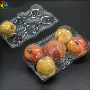 Factory Direct Supply 5 Compartment Food Plastic Fruit Container