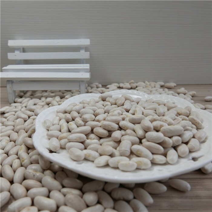 High quality Spanish Medium white kidney bean white navy beans for sale