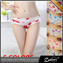 High Quality Hot Style Teens Underwear Cotton Little Girls Modeling Panties