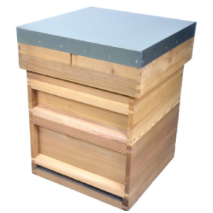 BH-02 Professional high quality British standard beehive with 10 frames