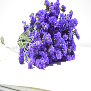 Preserved flower purple limonium statice flower for weddinghome preserved flower purple limonium statice flower for weddinghome party decorations mightylinksfo