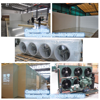Insulation Cold Room Equipment for Slaughter House