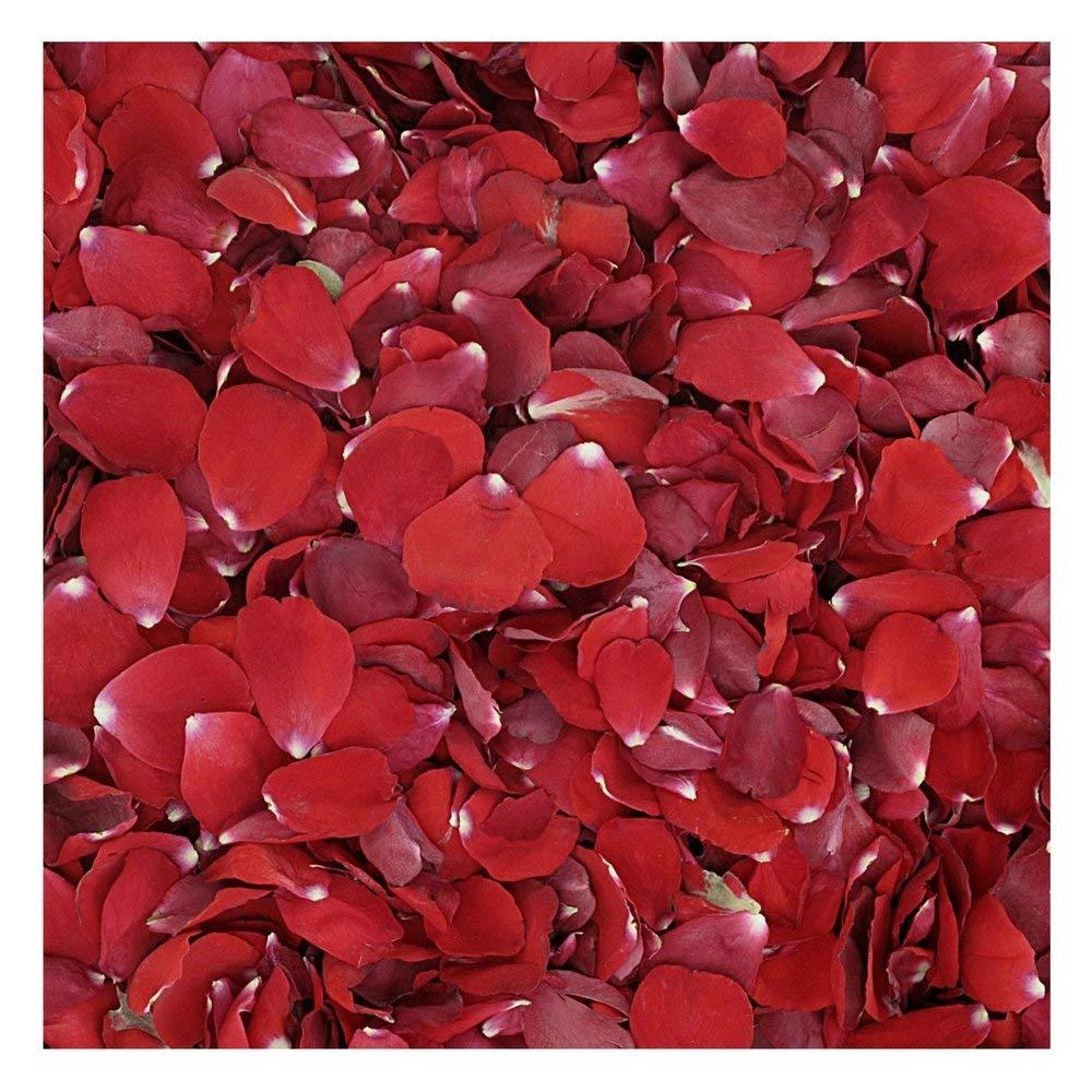 Flyboy Naturals Red Rose Petals - 30 cups Rose Petals. Wedding Rose Petals from