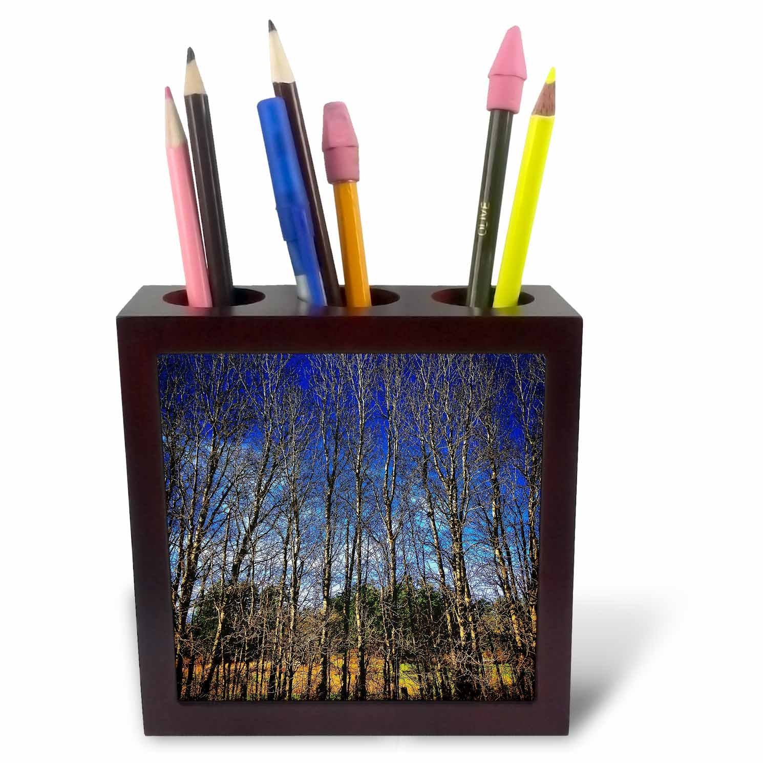 DYLAN SEIBOLD - PHOTOGRAPHY - THIN TREE STAND - 5 inch tile pen holder (ph_245711_1)