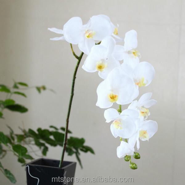 Wf 1512546 flores artificiais phalaenopsis orqu deas para - Plantas artificiales baratas ...