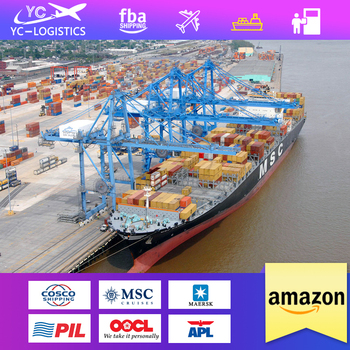 china top 10 freight forwarders ddp shipping to amazon usa europe
