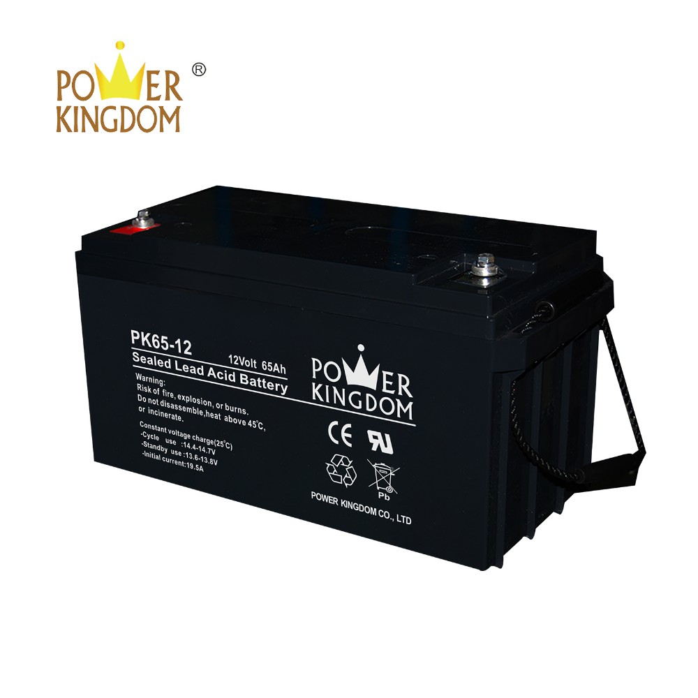 Power Kingdom High-quality deep cycle battery technology Suppliers-2