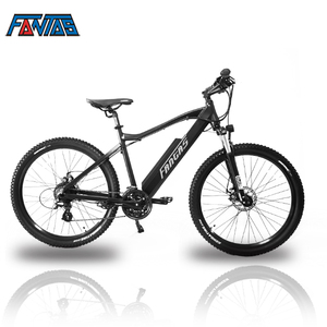 Fantas-Bike City-hunter002 36V750W e bike 28""