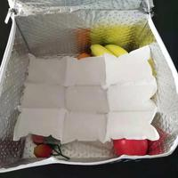 dry ice sheet for fish Techni Ice Heavy Duty Reusable Dry Ice packs