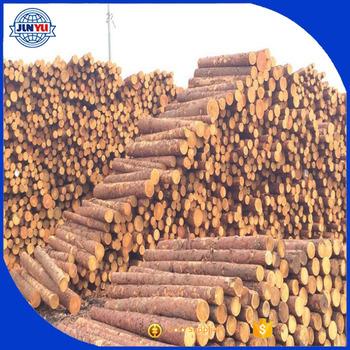 Round Pine Logs Radiate Pine Logs From New Zealand