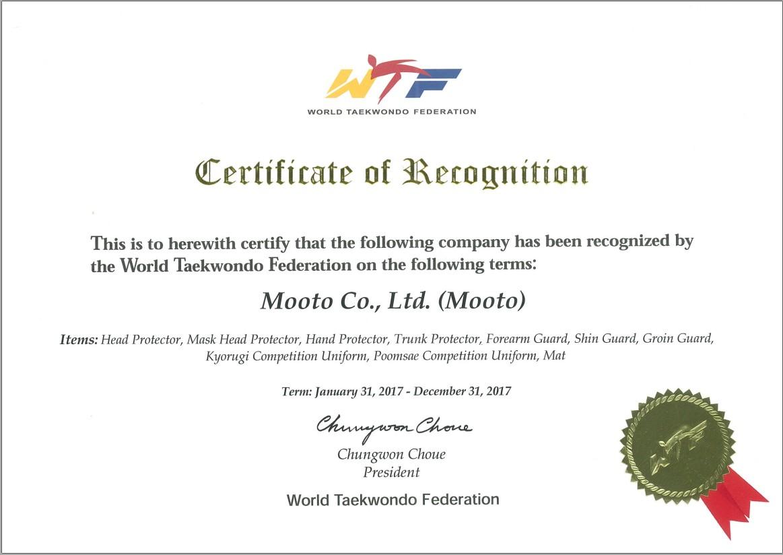 Manufactory Direct Taekwondo Kickboxing Judo Karate Mma Mat