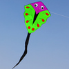 colorful big fish kite for kids