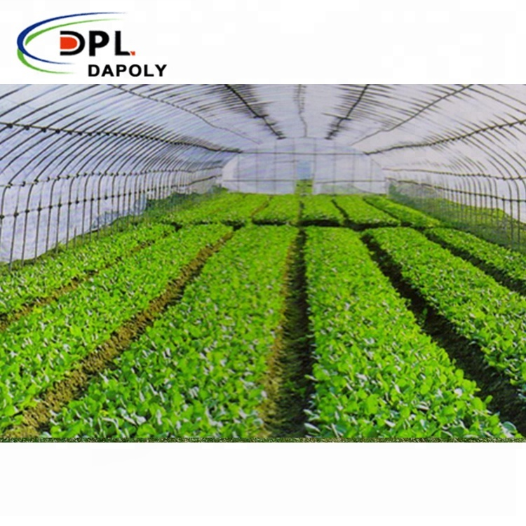 Factory Price Anti Insect Screen Greenhouse Agricultural Tomato Protect Insect Proof Mesh Fine Mesh <strong>Net</strong>