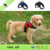 2018 Amazon Top Selling Reflective Dog Harness
