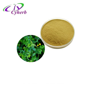 Best selling products lowing blood fat natural herbal lucerne hay/Medicago sativa/alfalfa powder alfalfa extract