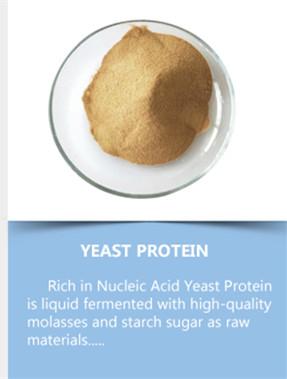Hoge nucleotide biergist Gehydrolyseerd gist voor AQUA FEED