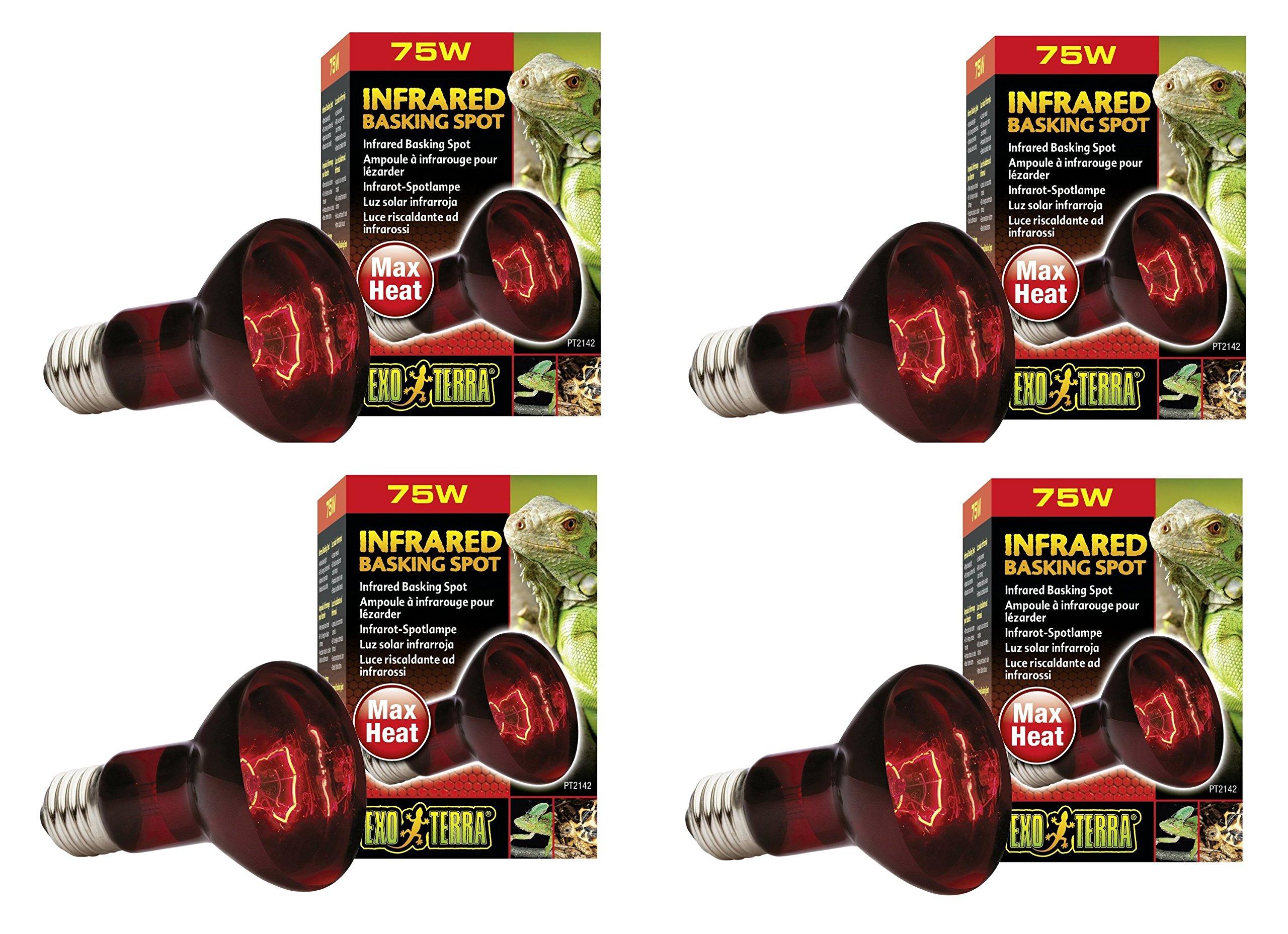 130 Volt Tuff Skin Sunlite 250 Watt Heat Lamp Infrared R40
