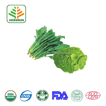 spinach extract/spinach extract powder/natural spinach powder