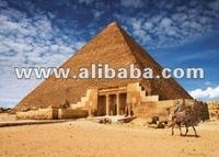 Egypt 4 All
