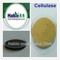 Feed, Paper-making, Textile wash, Enzyme Cellulase