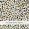 JSX Dried Large White Kidney Bean Selling Price