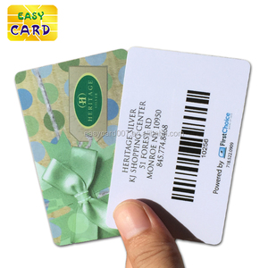 Customized printing Promotional gift visa card