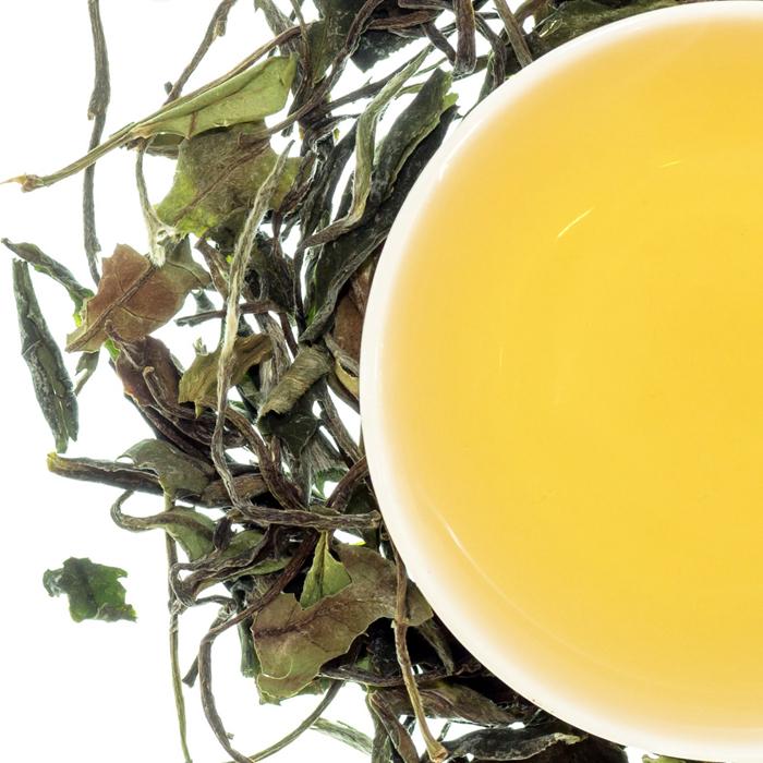 EU Standard Pai Mu Dan White Peony Tea - 4uTea | 4uTea.com