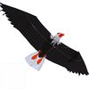 3D Eagle animal kite from kite factory