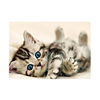 Photo custom Diy diamond painting endearingly cat crossstitchmake your own picture fulldrillRhinestone embroidery