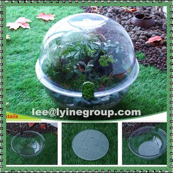 transparent flower pots garden plant container buy plant container garden plant container. Black Bedroom Furniture Sets. Home Design Ideas