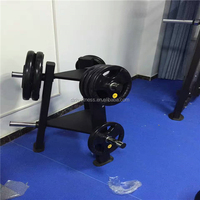 Commercial Gym And Club Dumbbell Plate Tree Rack