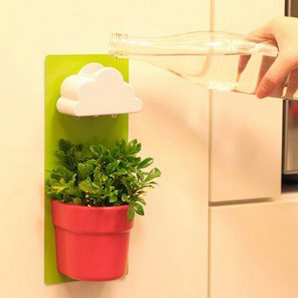 Buy Creative Wall Cloud Rain Flower Pot Novel Home Decoration Green ...