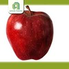 farm new crop apples new high quality fresh top red huaniu apples price for sale