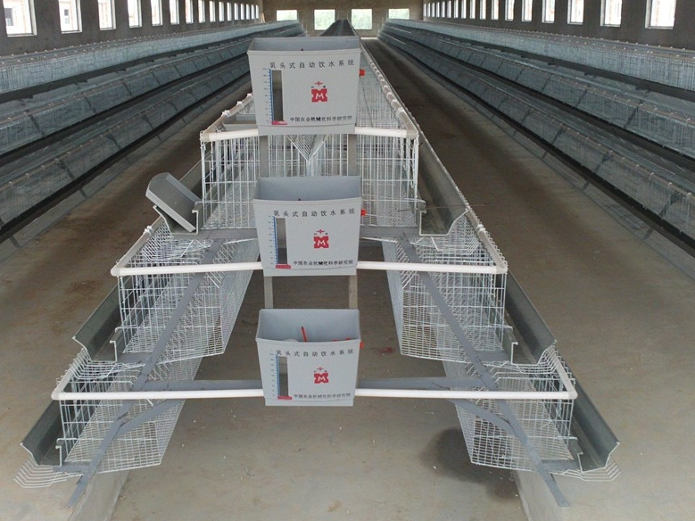 Newest Promotion Used Chicken Cages Chicken Hen Layer