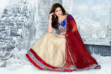 Indian Wedding Dresses Bridal Lehenga Choli Party Wear Lehenga Dress Costume