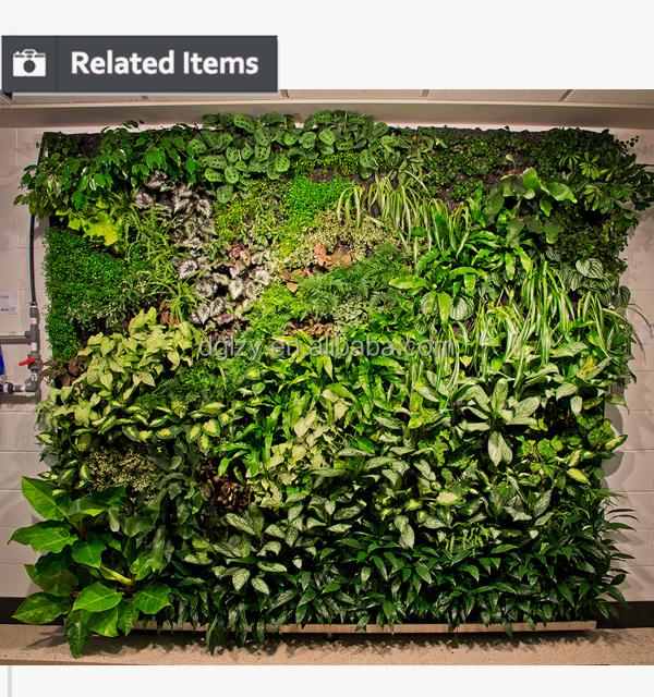 Nieuwe ontwerp groene 2016 verticale tuin planten systeem for Verticale tuin systeem