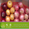 2015 Fresh Onion Different Color Packed in Mesh Bag