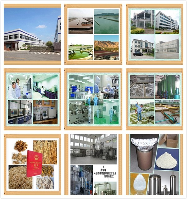 Sarms Mk677//lgd//yk11//sr9009//gw501516//mk2866 And Buy Ostarine - Buy  Gw501516,Mk2866,Sr9009 Product on Alibaba com