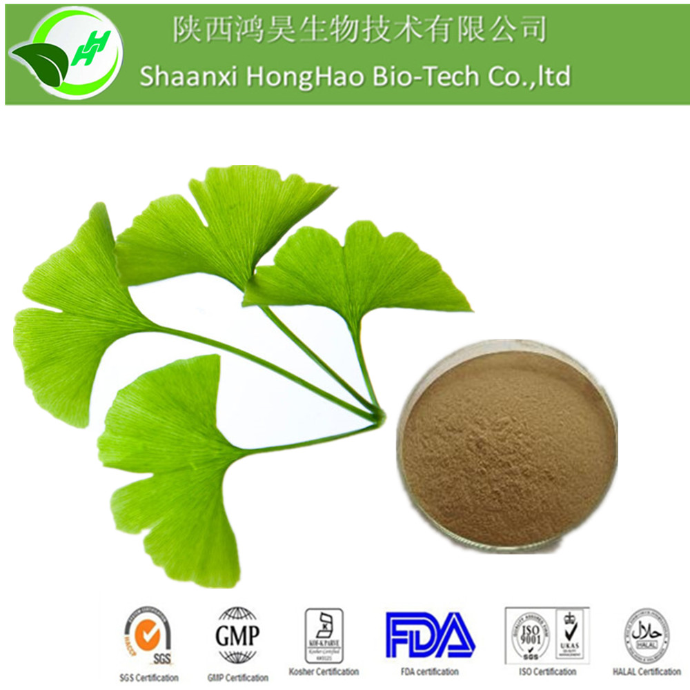 Herb Medicine Auti Cancer 24%Flavone glycosides From Natural Ginkgo Leaf Extract/ Natural Ginkgo Leaf Extract Powder