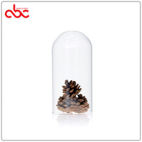 Small Glass Display Dome Bell Jar ( no base) D10xH20cm (D3.94xH7.87 inches)