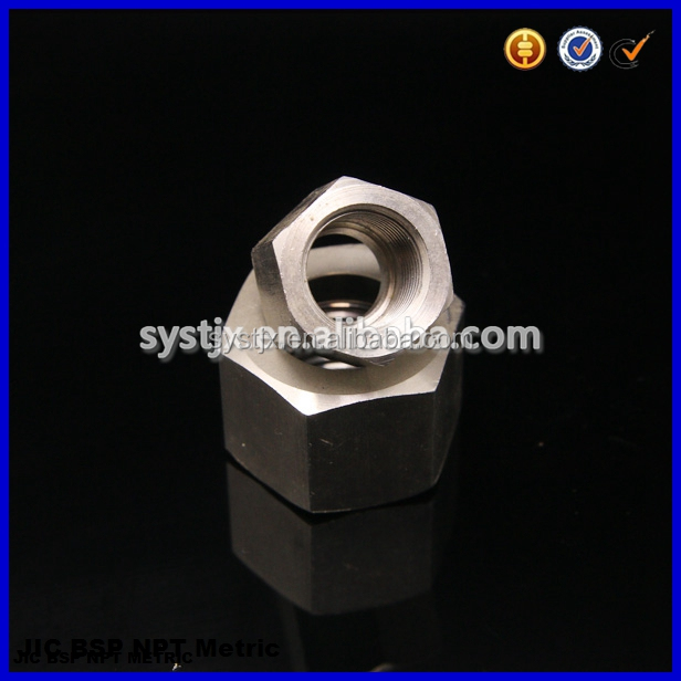 OEM SS304 SS316 hexagon stainless steel nut