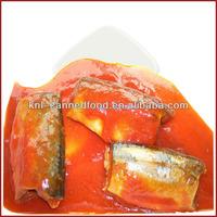 mackerel in tomato sauce from Norway 425gX24tins