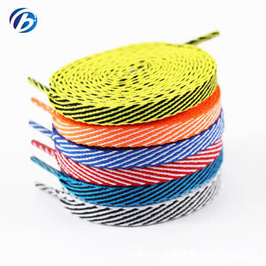 Guangdong Factory Cheap Custom Elastic Spring Shoe Laces For Sports