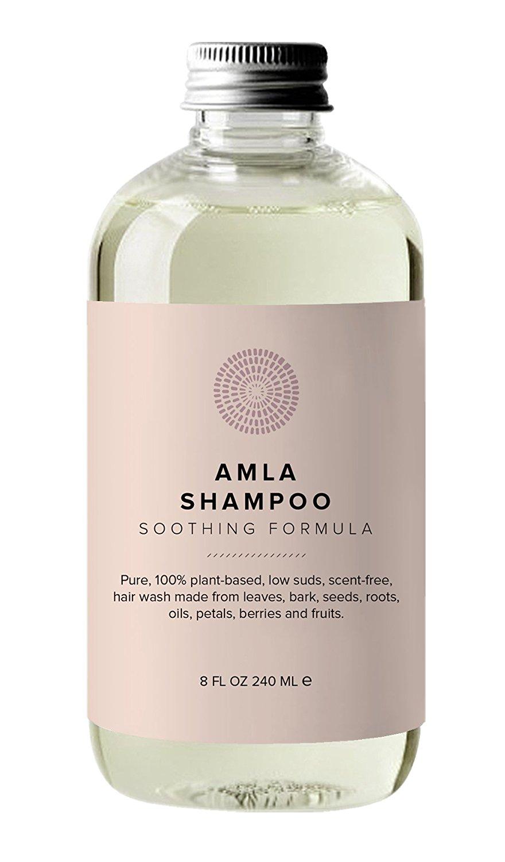 Hairprint - 100% Plant-Based/All Natural Amla Shampoo (8 fl oz/240 ml)