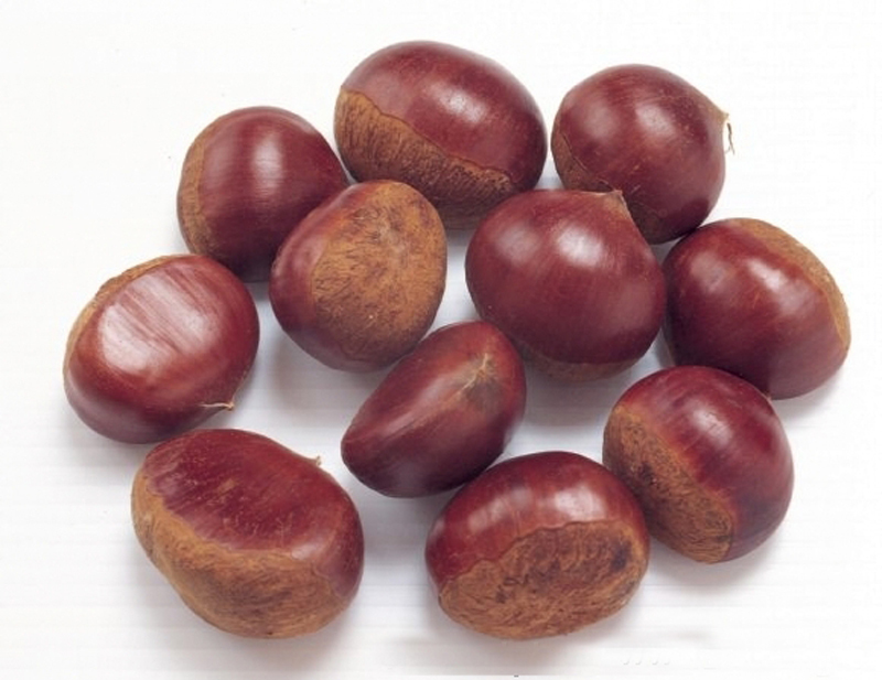 Fresh new season frozen IQF peeled chestnut kernel
