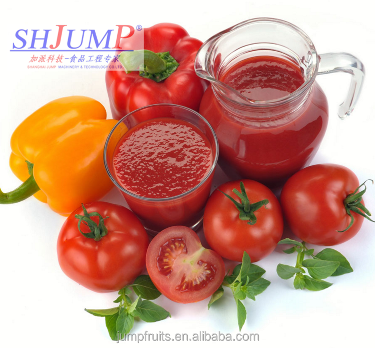 Best Price 100% Pure Tomato Paste In Steel Drum / Canned / sachet / pouch