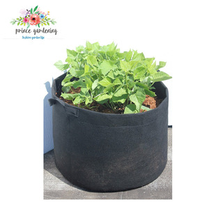 Environmental Cheap Promotional Garden Grown Wall Planting Bag
