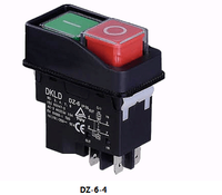 with OEM service IP55 250V DZ-6-2C Electromagnetism switch double-head push button trigger switch industrial switches