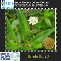Hair growth eclipta alba extract powder
